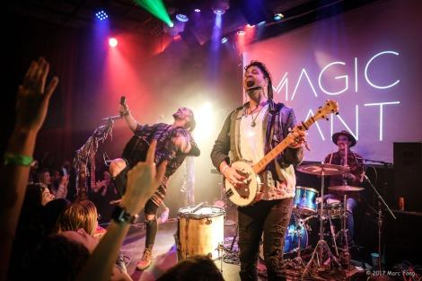 Magic Giant-1